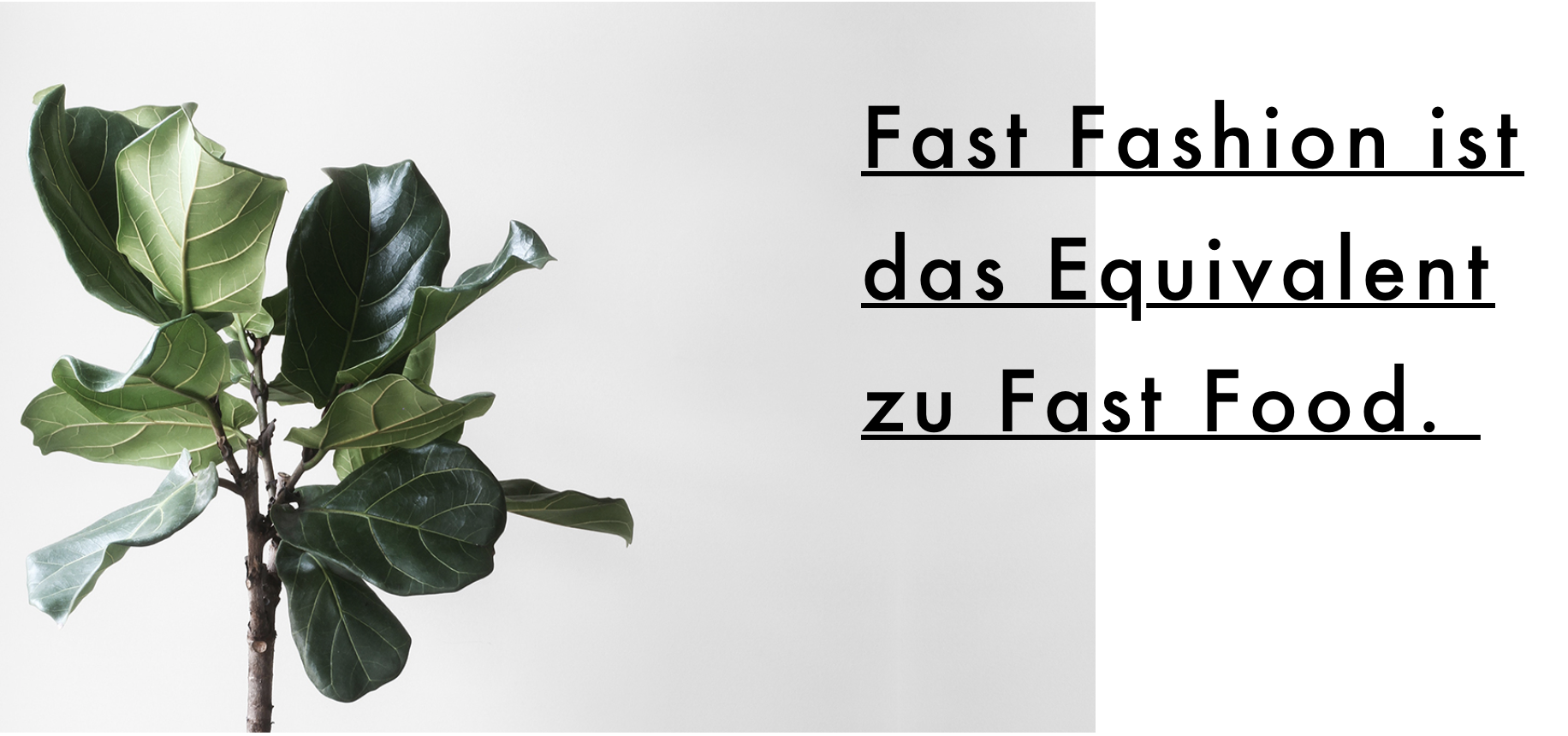 bye bye Fast Fashion