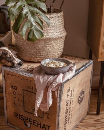 Pippa Vegan Dog